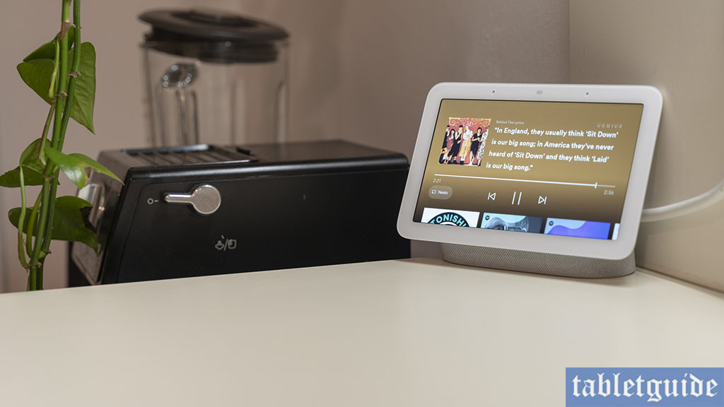 nest hub 2 audio